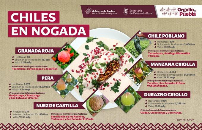 Se buscan mecanismos para la promoción de insumos y venta de Chiles en Nogada