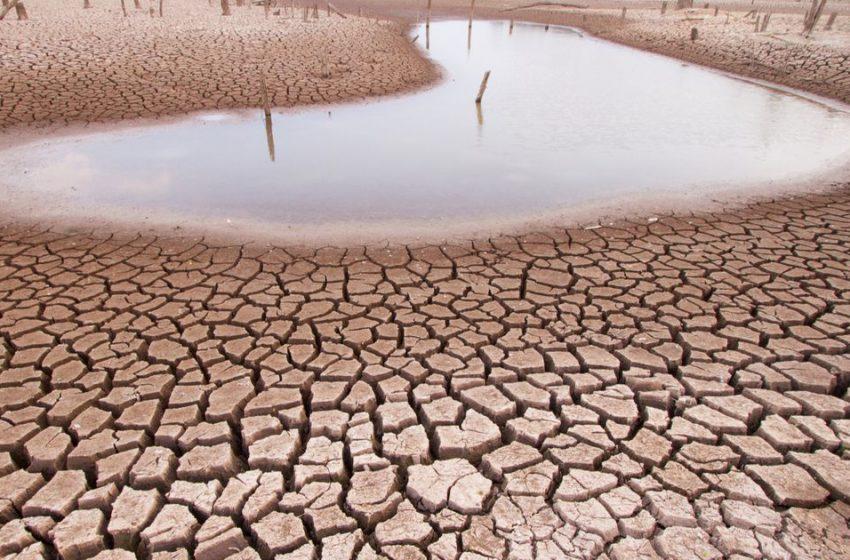 Sequía en 102 municipios amenaza cultivos