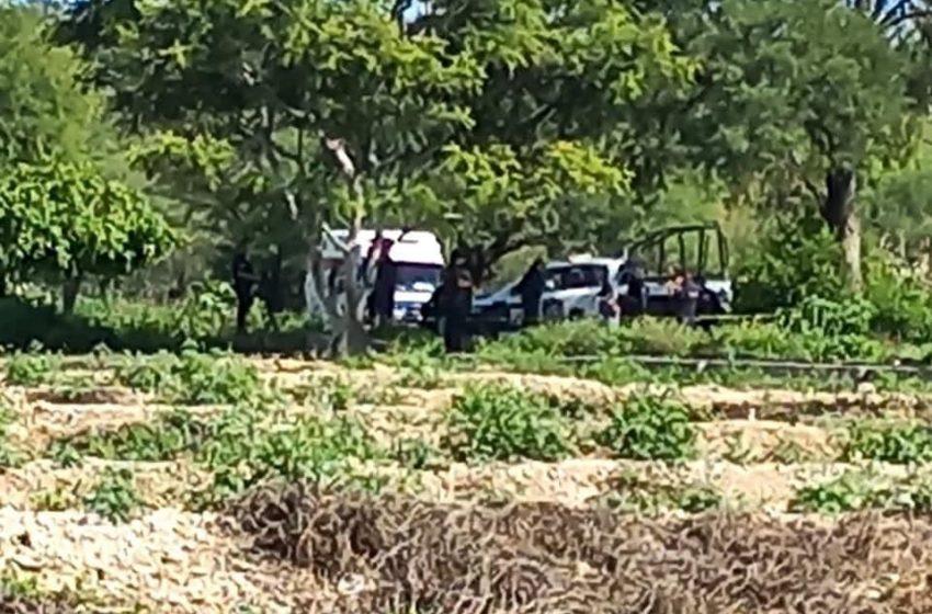 Hombre se quita la vida colgándose de un árbol en Altepexi